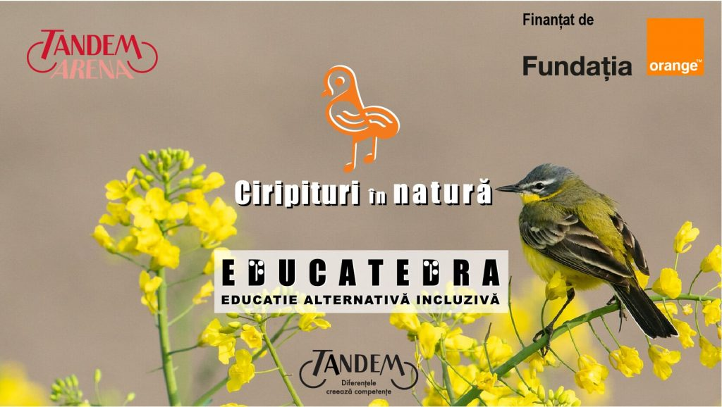 cover-ciripituri-in-natură-isa-educatedra