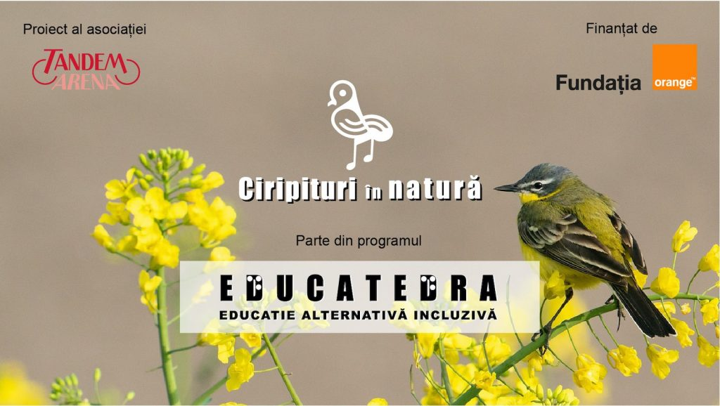 video-cover-Educatedra