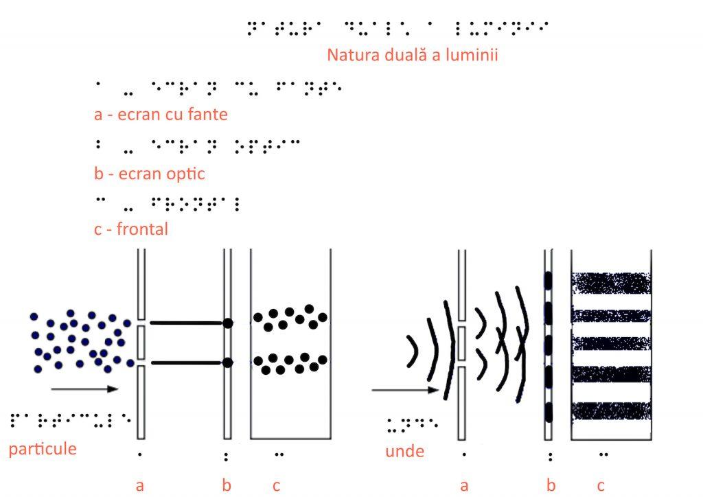 natura duala a luminii braille site